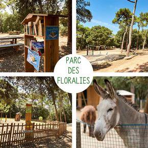 Camping Grand Pré : Parc Des Floralies